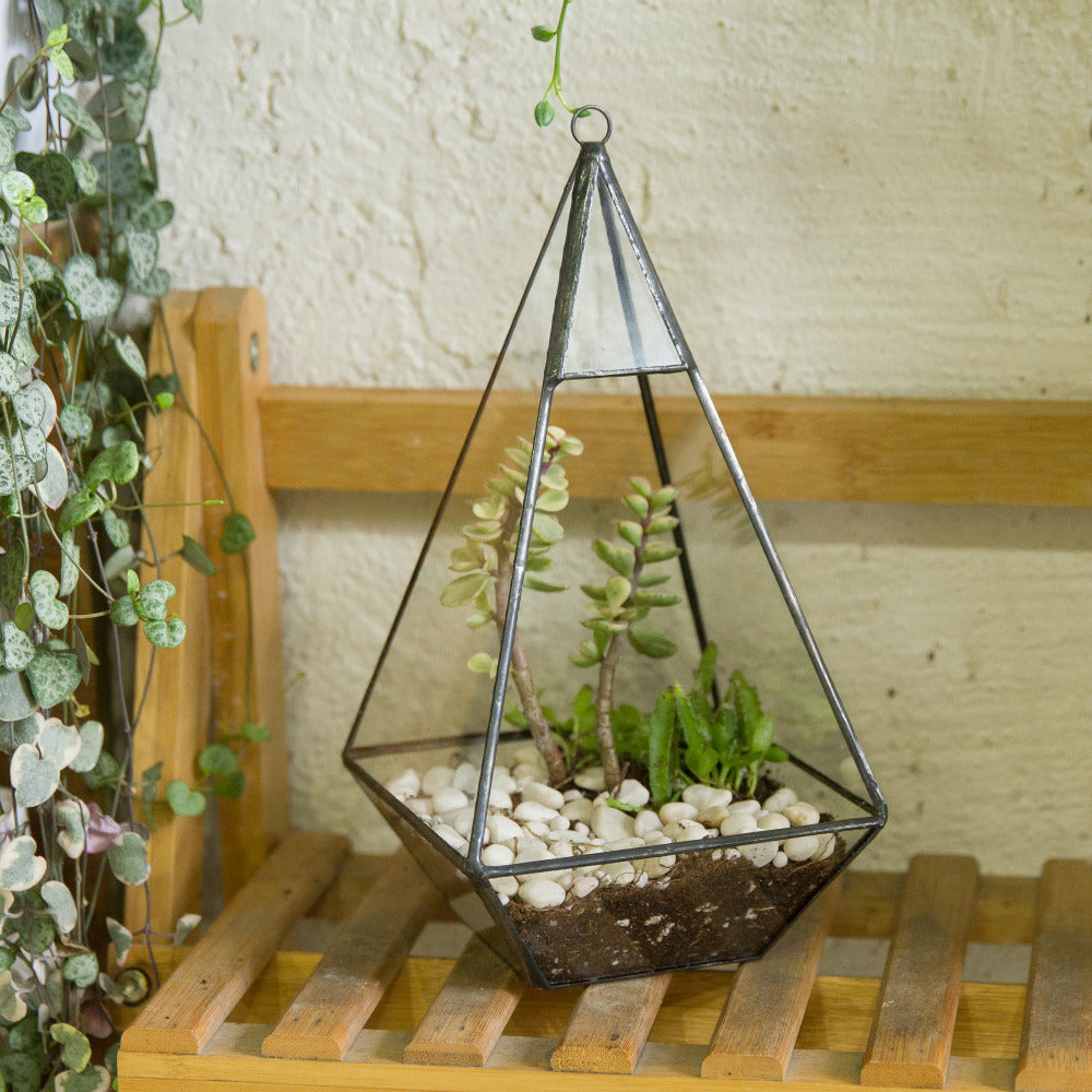 Handmade Glass Geometric Terrarium Indoor Outdoor Planter Landscape Wall Pyramid for Succulents - NCYPgarden