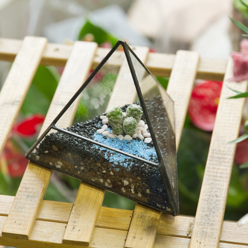 Handmade Pyramid Geometric Glass Terrarium for Succulent Fern Moss Airplants Cacti - NCYPgarden
