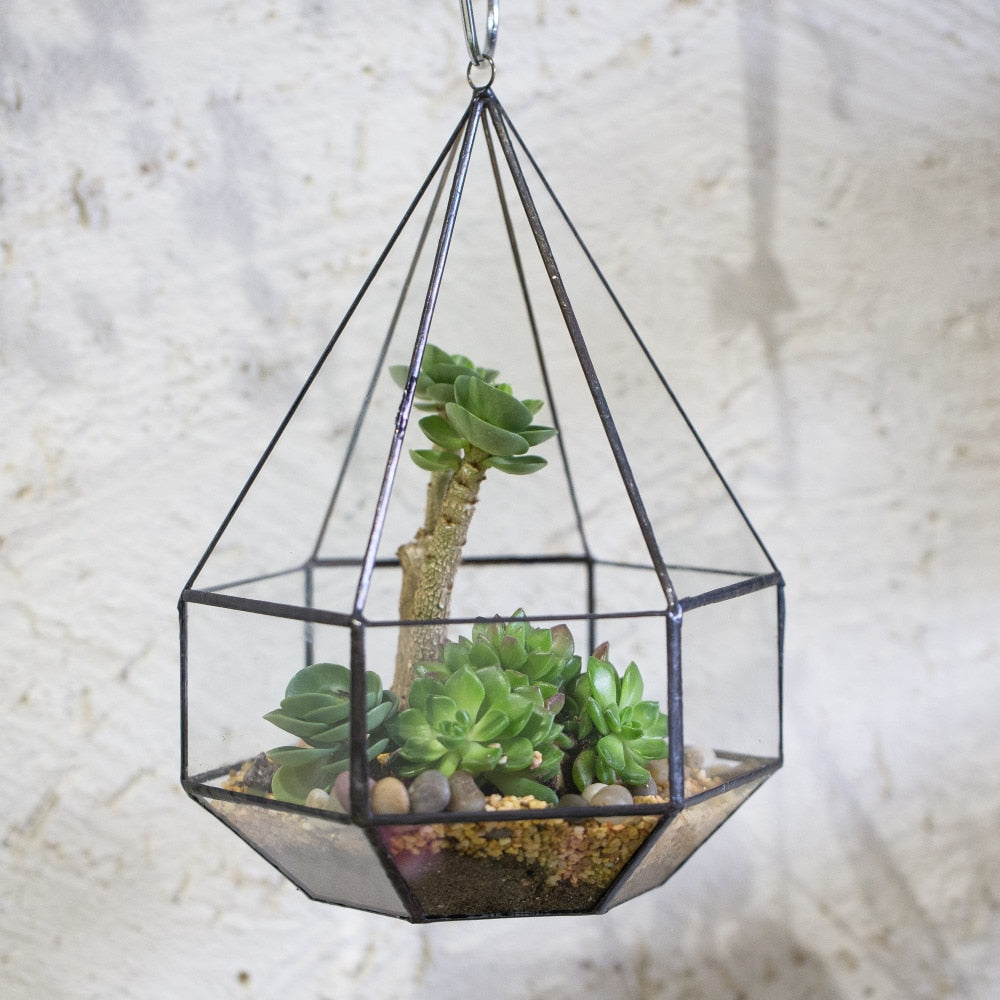 Handmade Hanging Six-surface Diamond Glass Geometric Terrarium with 3 Spaced Opening for Succulents - NCYPgarden