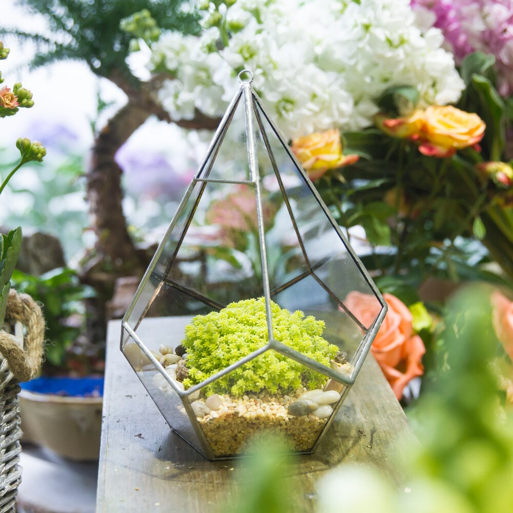 Handmade Silver Hanging Teardrop Shape Geometric Glass Terrarium for Succulent Moss Fern - NCYPgarden