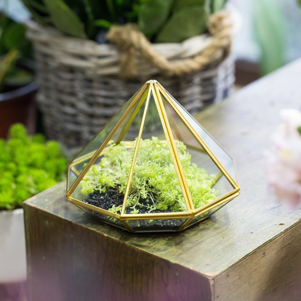 Handmade Side Open Gold Diamond Shape Glass Geometric Terrarium for Centerpiece Succulent Moss - NCYPgarden