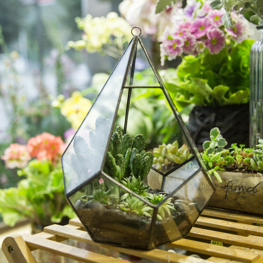 Handmade Black Hanging Teardrop Shape Glass Geometric Terrarium for Succulents Cacti - NCYPgarden