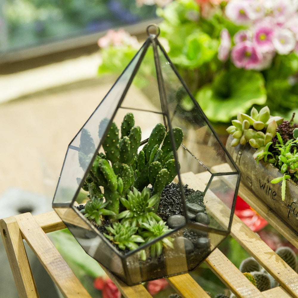 Handmade Artistic Hanging Glass Teardrop Diamond Geometric Terrarium with Loop for Succulent Moss - NCYPgarden