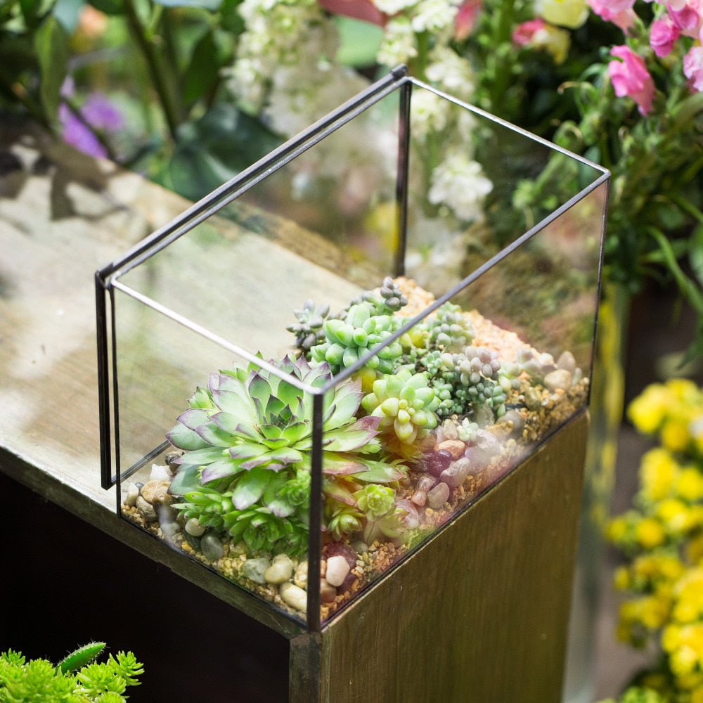 Handmade Rectangle Clear Glass Geometric Terrarium Box with Lid for Succulents Micro Landscape - NCYPgarden