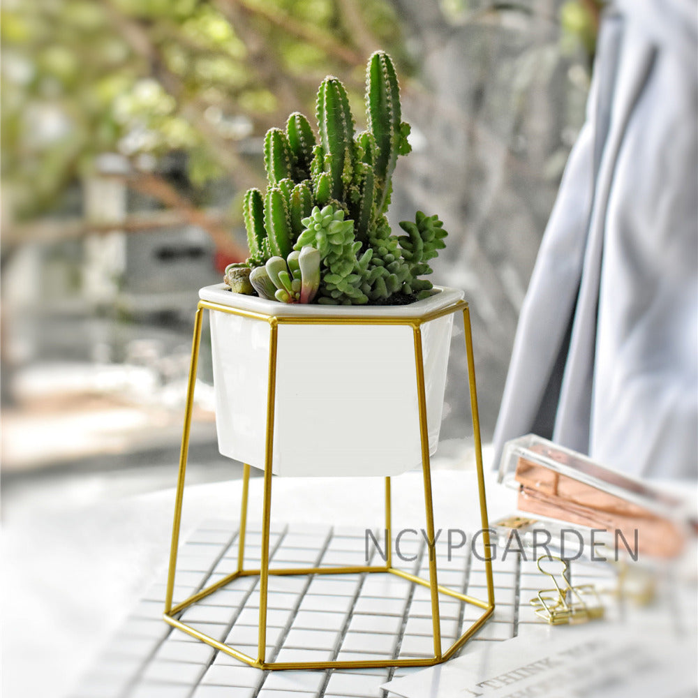 Gold Iron Rack Holder with White Ceramic Pot Planter for Succulents Herb Flower Desktop Decoration - NCYPgarden