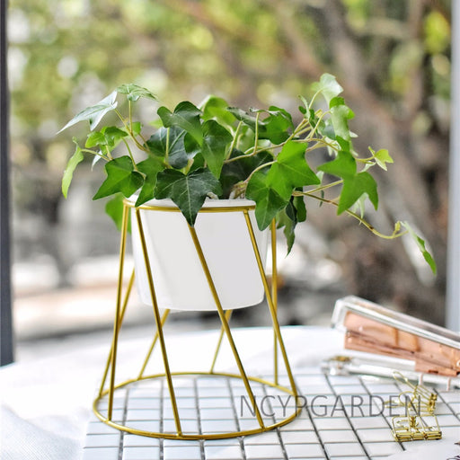 Gold Iron Rack Holder with White Ceramic Pot for Succulents Herbs Cactus Plants - NCYPgarden