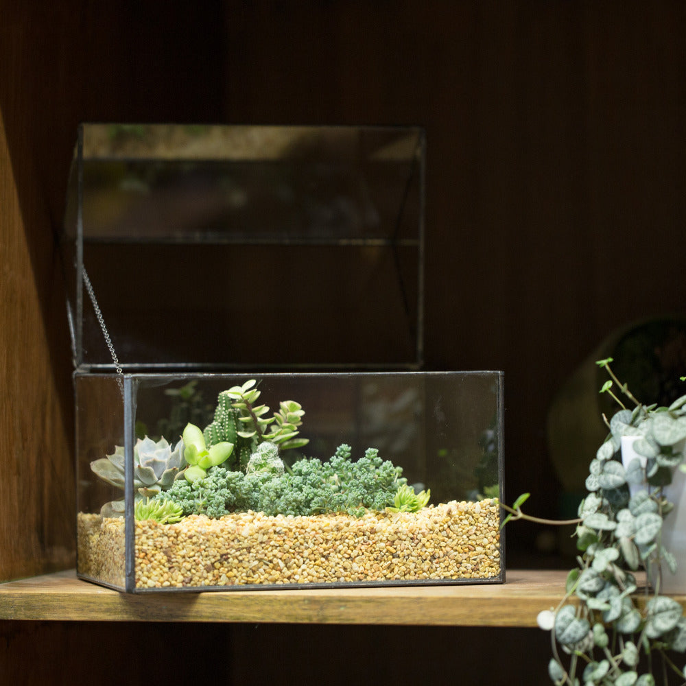 Handmade House Shape Glass Black Geometric Terrarium with Lid for Succulent Moss Airplants Cacti - NCYPgarden