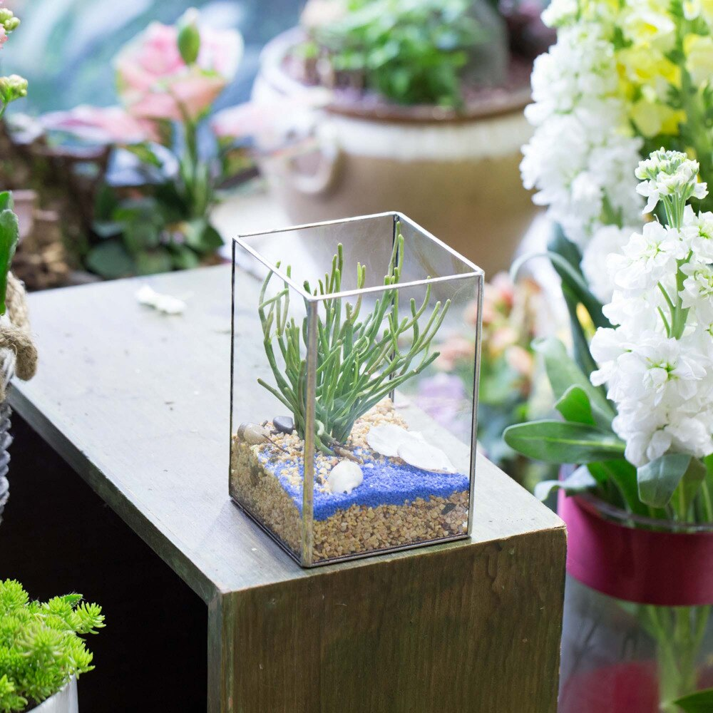 Handmade Silver Long Geometric Glass Terrarium for Succulents Moss Cacti Fern - NCYPgarden