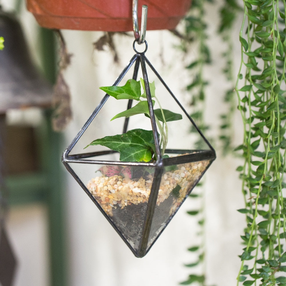 Handmade Small Hanging Hanging Geometric Glass Terrarium for Succulent Air Plant - NCYPgarden
