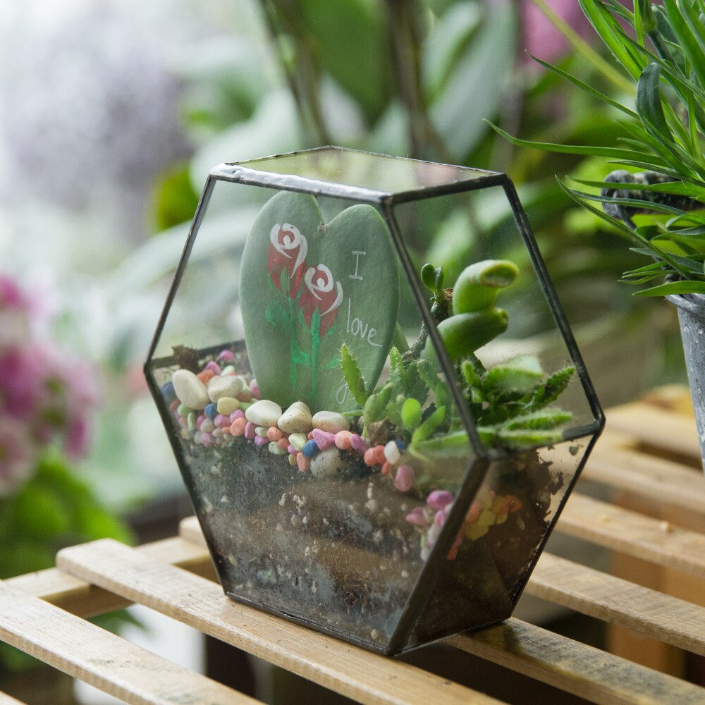 Handmade HoneycombThin Glass Geometric Terrarium for Succulents Moss - NCYPgarden