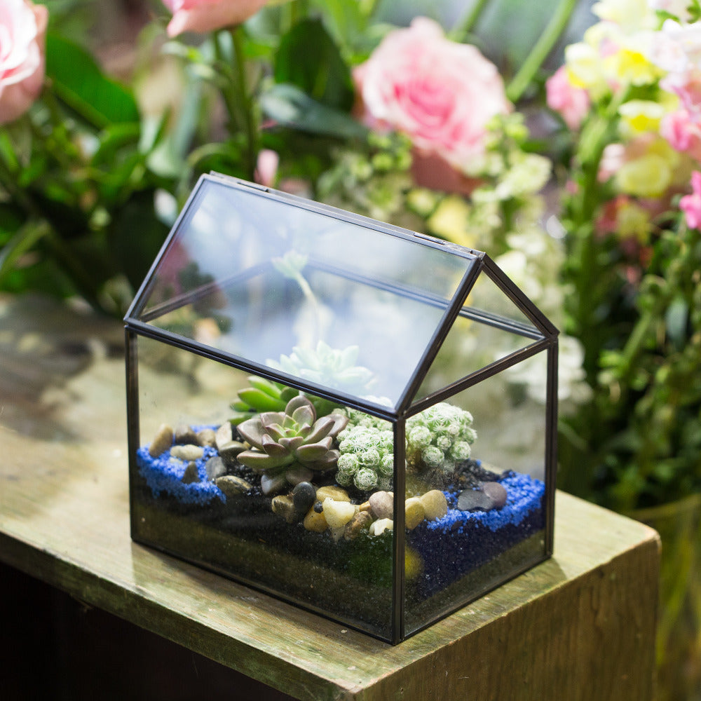 Handmade Black Gold Glass Box Geometric Terrarium with Lid for Planter Container Storage Case Gift - NCYPgarden