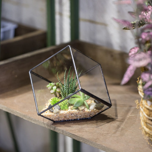 Handmade 10cm Inclined Cube Vase Glass Geometric Terrarium Tabletop Flowerpot for Garden Succulents - NCYPgarden