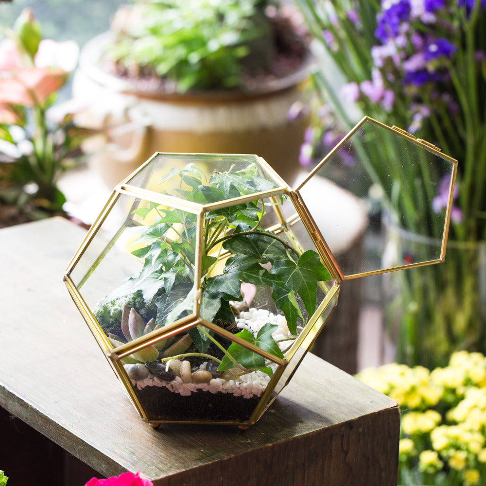 Handmade Gold Ball Shape Glass Geometric Terrarium with Feet Door for Succulent Plants Moss - NCYPgarden