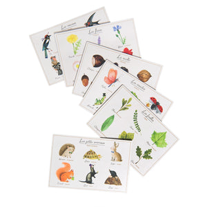 on a white background, cards illustrated with garden themed things spread out in a fan