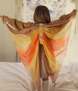 Silk Wings
