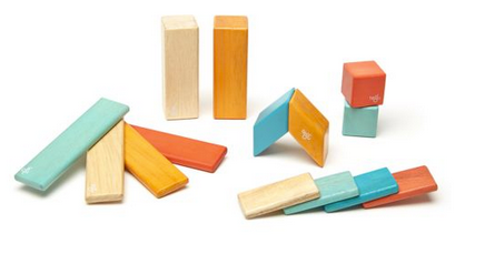 Tegu Magnetic Blocks 14pc