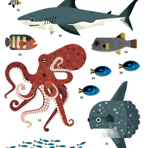 Poppik Giant Poster with 59 Stickers Animals of the Ocean