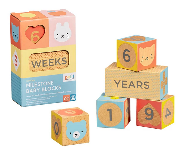 Milestone Baby Blocks