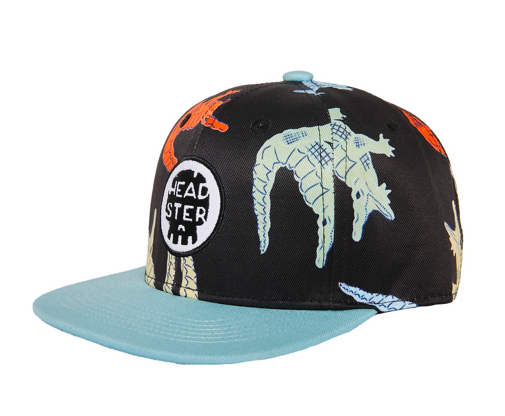 Headster Colocroco Hat