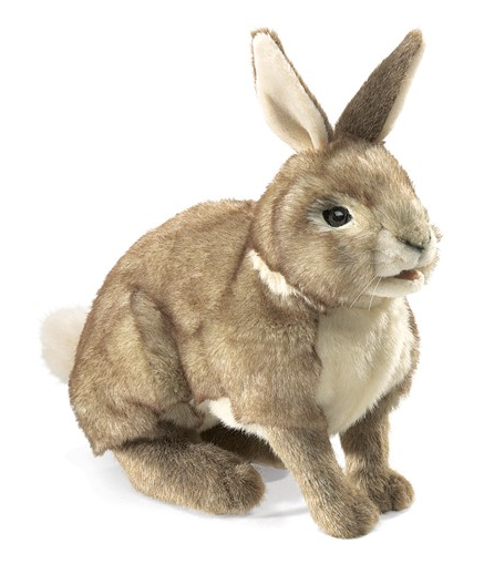 plush cottontail rabbit sitting facing right on a white background