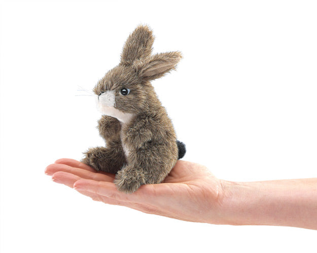 on a white background, a small brown plush jackrabbit in the palm of a hand