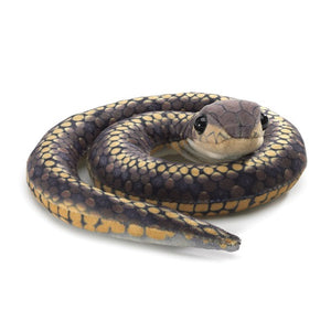 On a white background, A small plush snake oin a coil