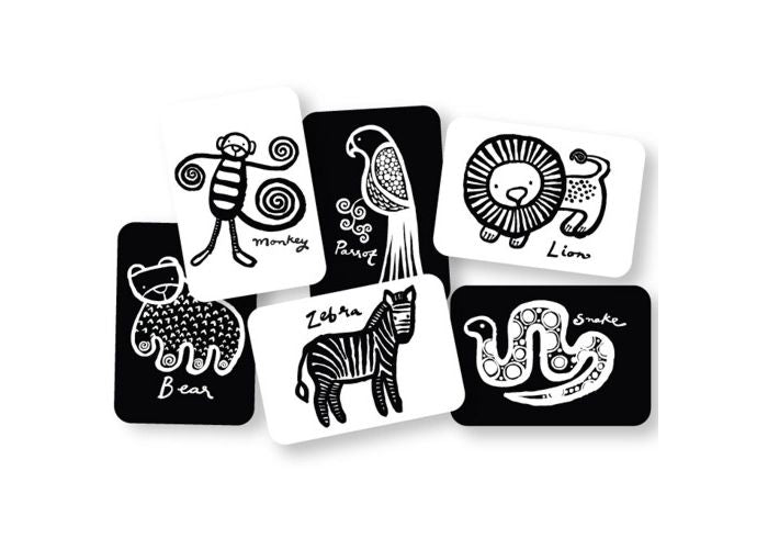 black and white images of jungle creatures on cards spead out jauntily on a white background