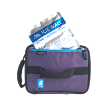 Load image into Gallery viewer, Arctic Zone Expandable Lunch Bag - Logan