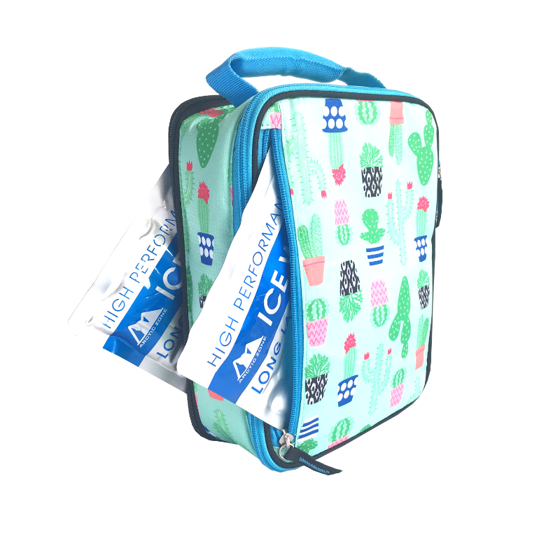 Arctic Zone Expandable Lunch Bag - Cactus