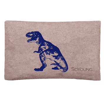 So Young Ice Pack with Sweat Free Cover - Blue Dinosaur
