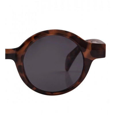 Collectif Rochel Sunglasses-Vendemia