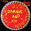 Damage and Joy - The Jesus and Mary Chain [CD]
