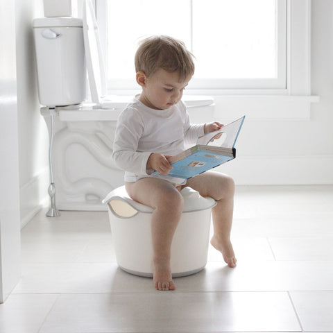 Vasino Potty 3 in 1 Grigio