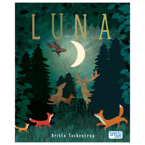 Libro Illustrato - Luna