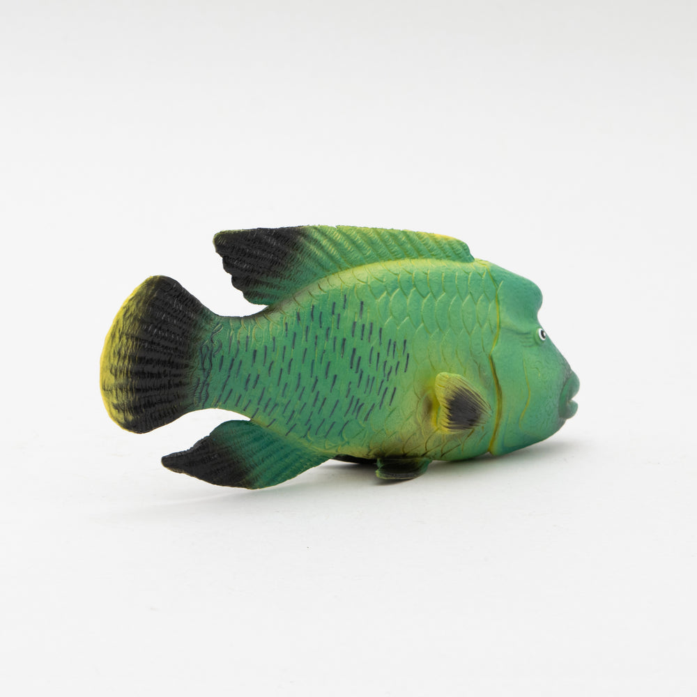 Load image into Gallery viewer, Humpback Wrasse Soft Model