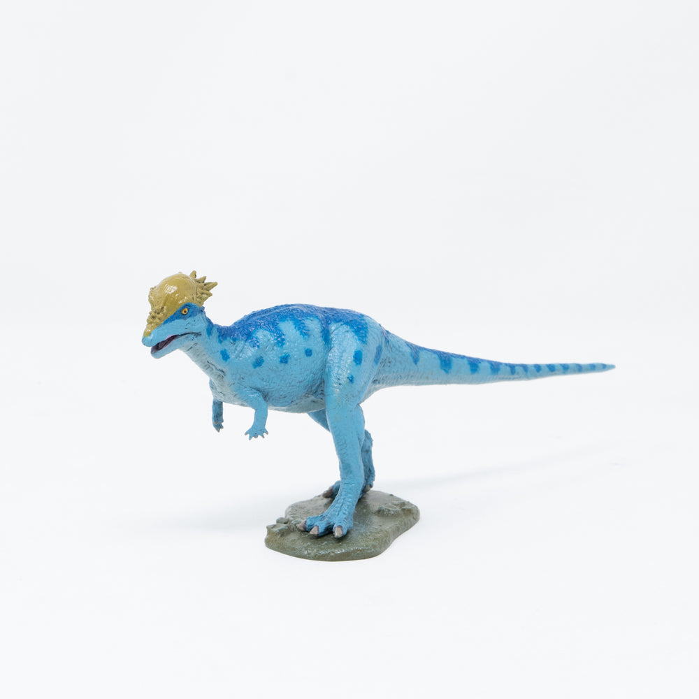 Pachycephalosaurus Soft Model
