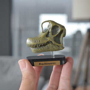 Load image into Gallery viewer, Brachiosaurus Skull Mini Model