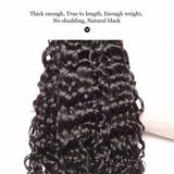 Puddinghair 8A Water Wave Peruvian 3 Bundles Human Hair With Lace Frontal Closure