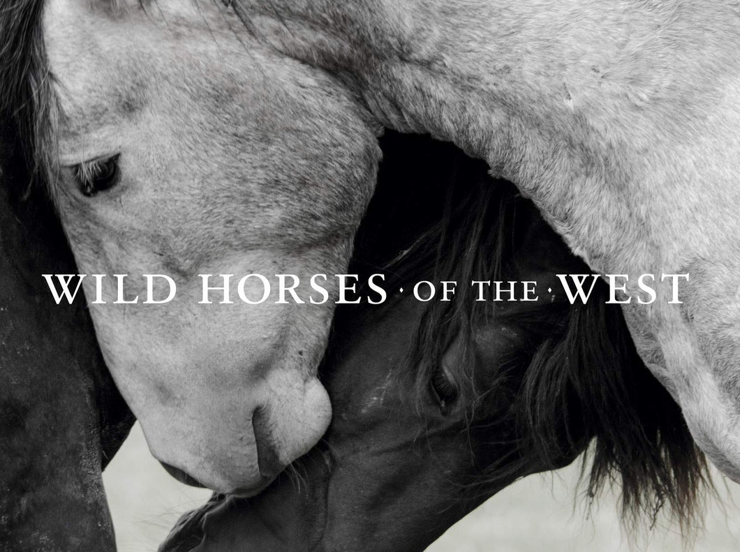Wild Horses of the West