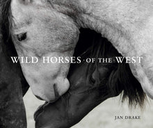 Load image into Gallery viewer, Wild Horses of the West