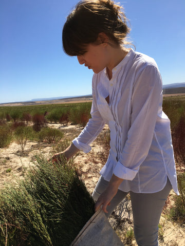 georgia ginsberg at the rooibos harvest