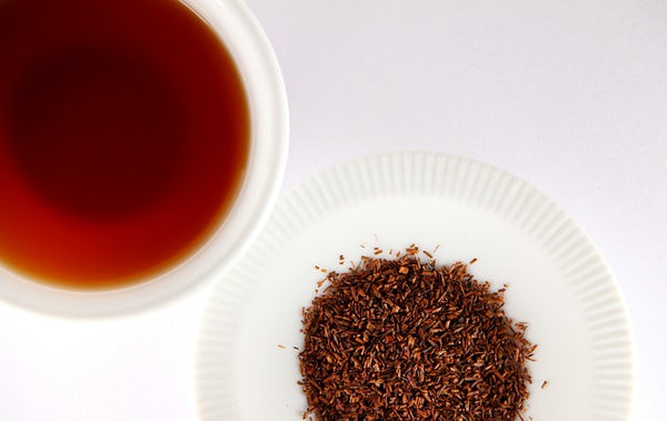 difference between red bush tea and rooibos tea