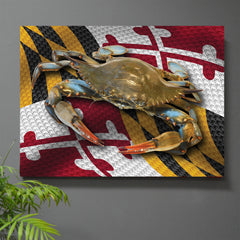 Banner Day Maryland Flag Wall Art - JWB Art Unlimited