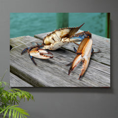 Buster the Crab - JWB Art Unlimited