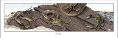 Drydock - Crab Wall Art - JWB Art Unlimited