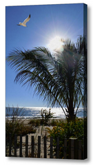 High Dune Beach Wall Art - JWB Art Unlimited