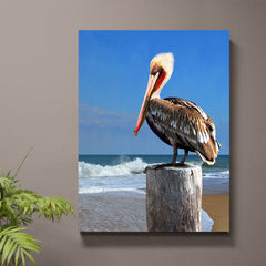 Morning Perch Pelican Wall Art