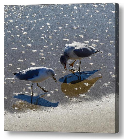 Sand Dance Beach Seagull Wall Art - JWB Art Unlimited