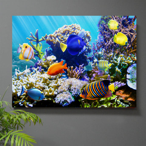 Tropic Wonder Uno Reef Wall Art