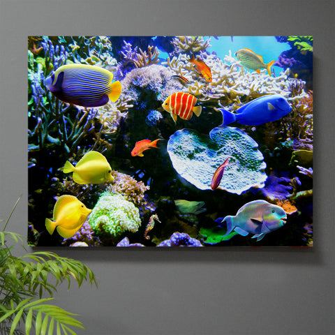 Tropic Wonder Tres Reef Wall Art